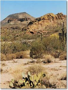 Apache Trail Photo