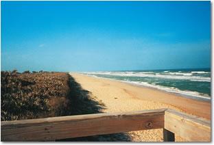 Canaveral National Seashore Photo