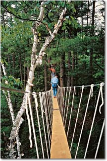 Photo of Elevated Boardwalk, Haliburton Forest and Wild Life Preserve