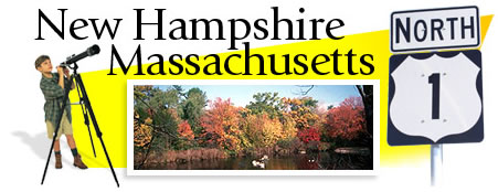 New Hampshire and Massachusetts Header Graphic