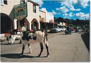 Oatman, Arizona Photo