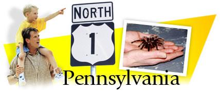 Pennsylvania Header Graphic