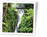 Waterfalls along Highway 101 in Washington Photo